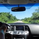 夏の車内のチャイルドシート暑さ対策!温度対策や温度を下げるには?